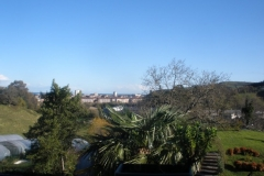 Itulazabal - jardin